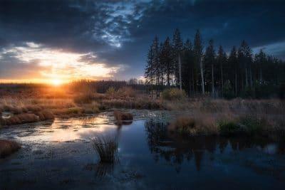 Lever de soleil à Brackvenn hautes fagnes foret lever de soleil reflet marécage tourbières Geoffrey Lje